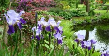 Die 9. Raesfelder Gartentage in Zusammenarbeit mit 4 Gärten aus Schermbeck